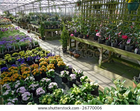 garden centre or plant nursery - stock photo