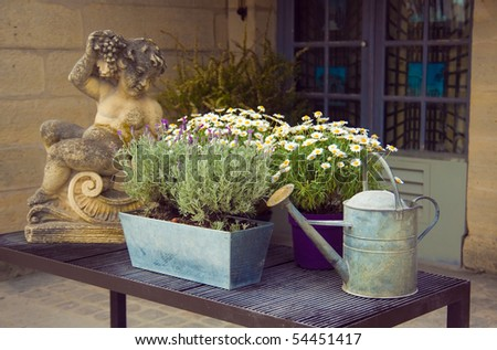 Garden composition with watering can - stock photo
