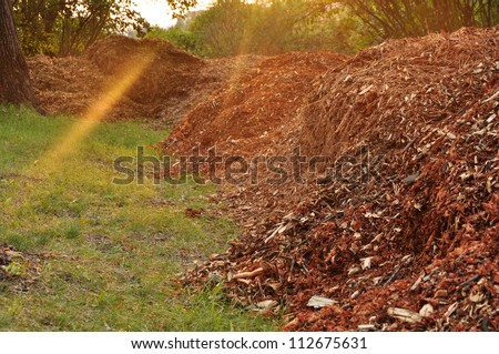 Garden compost, mulch leaves. - stock photo