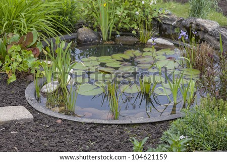 garden decoration in a cottage garden,  pond with water-lily - stock photo