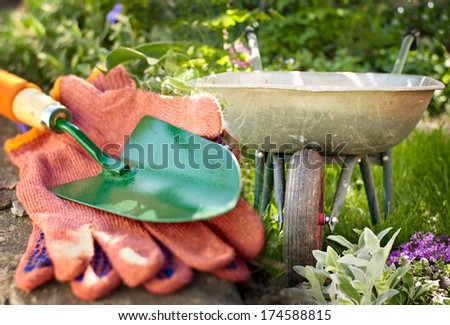 Garden equipment standing ready in the garden to cultivate the flowers with a pair of gardening gloves and small green metal trowel in the foreground and galvanised wheelbarrow behind