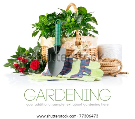 garden equipment with flowers and green plants isolated on white background - stock photo