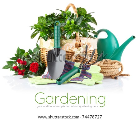 garden equipment with green plant and flower isolated on white background - stock photo