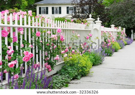 Garden fence and gate with pink roses, salvia, catmint, lady's mantle bordering house entrance - stock photo