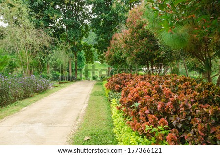 Garden filled with various plants and trees - stock photo
