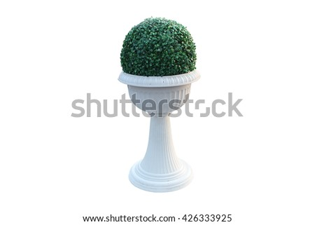 garden flowerpot with ornament and evergreen plant in classic style isolated on white with clipping path - stock photo