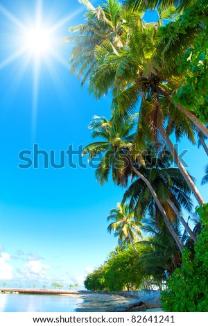Garden Foliage Park - stock photo