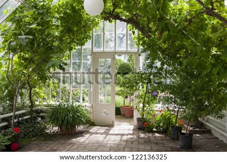 Garden greenhouse - stock photo