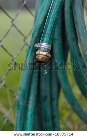Garden hose - stock photo