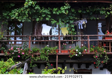 Garden in the balcony in the Old Town house in Veliko Tarnovo in Bulgaria - stock photo