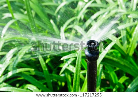 Garden irrigation system watering lawn - stock photo