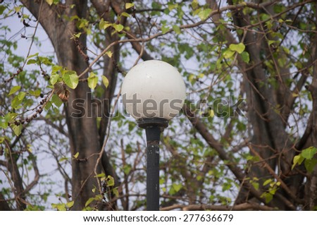 garden lamp on the background of tree - stock photo