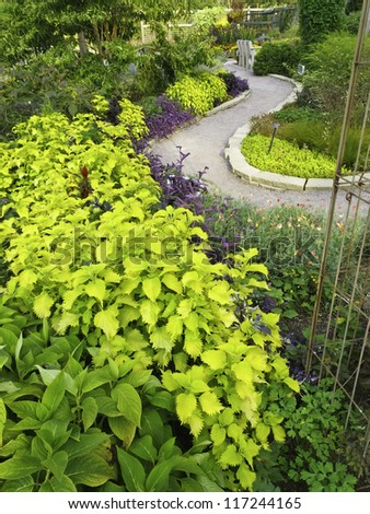 Garden landscape with S-curved path in summer - stock photo