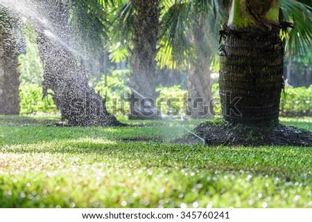 Garden lawn water sprinkler system. - stock photo