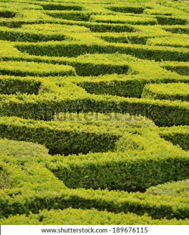 Garden Maze Detail  - stock photo