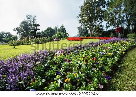 Garden of Doi Tung Royal Villa, Chiang Rai, Thailand - stock photo