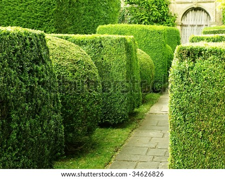 Garden Path with Topiary Landscaping - stock photo