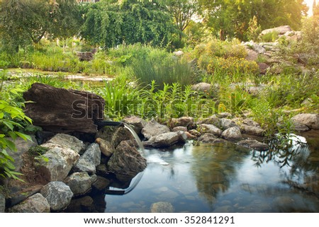 Garden pond and