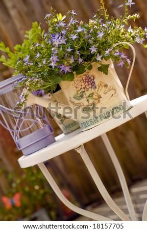 Garden scene - stock photo