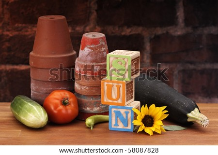 Garden set with blocks SUN - stock photo