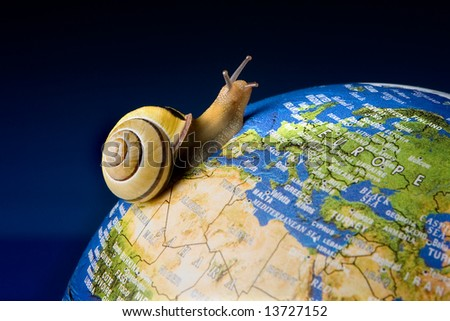 Garden snail travelling around the world like a tourist