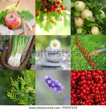 Garden time - stock photo