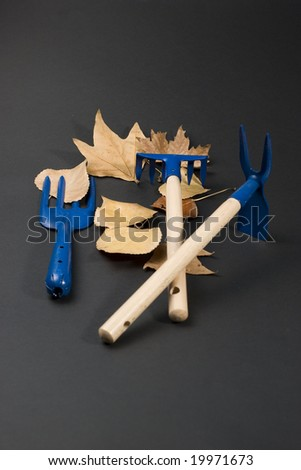 Garden tools and autumn leafs - stock photo