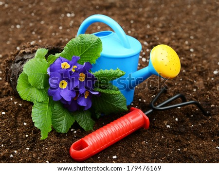 garden tools and flowers on a soil  - stock photo
