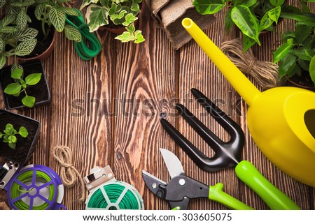Garden tools and plants on a wooden background - stock photo