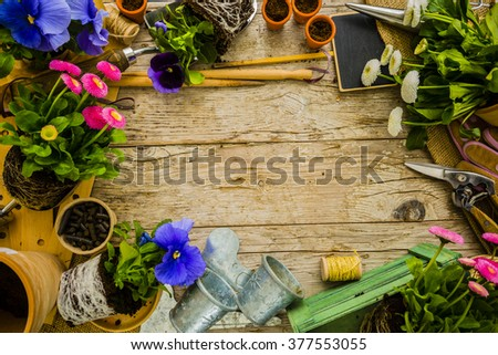 Garden tools, flowers and seeds on a wooden background, frame - stock photo