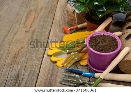 Garden tools on a wooden background - stock photo