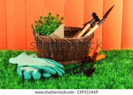 Garden tools on grass in yard