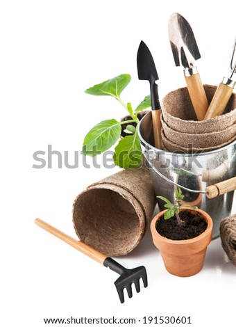 Garden tools with seedlings vegetable. Isolated on white background - stock photo