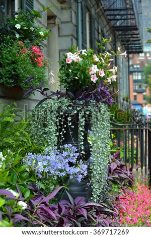 Garden urn and window box in small, colorful yard - stock photo
