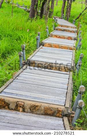 Garden Walkway - pathway into garden during day time - stock photo