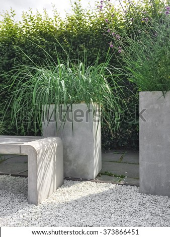 Garden with decorative grass, concrete and stone details. Contemporary design.