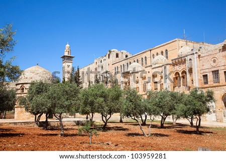 Garden with olives inside of Temple Mount (Har Ha-Bayit) in Old City of Jerusalem. Israel - stock photo