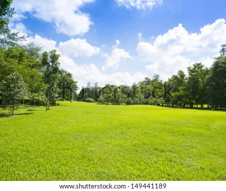 Garden with the sky. - stock photo