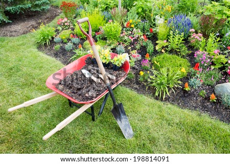 Garden work being done landscaping a flowerbed with a red wheelbarrow full of organic potting soil and celosia seedlings standing with a spade on a manicured lawn alongside a bed of colorful flowers - stock photo