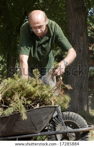gardener at work with barrow