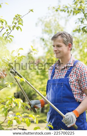 Gardener clipping tree branches at plant nursery - stock photo