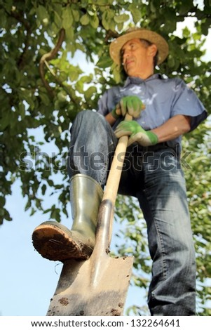 Gardener digging with spade - stock photo