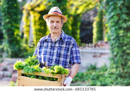 gardener holding a box with fresh collected greens and vegetables