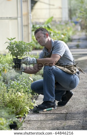 Gardener in a green house - stock photo
