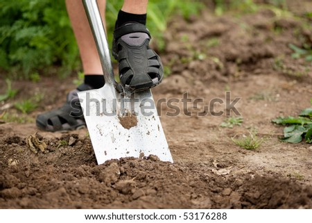gardener - only feet to be seen - digging the soil in spring with a spade to make the garden ready