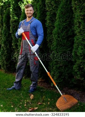 Gardener raking up leaves  - stock photo
