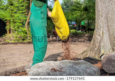 Gardener spills mulch on barrier weed to protect plants - stock photo