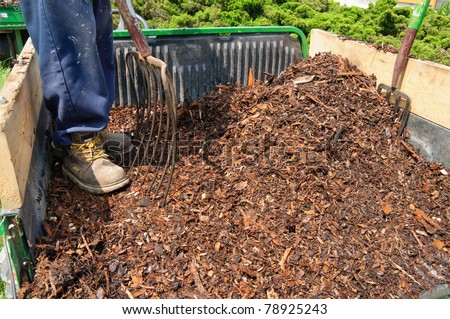 Gardener standing in trailer full of mulch - stock photo