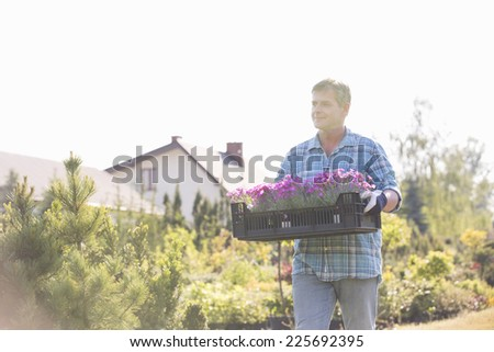 Gardener walking while carrying crate of flower pots in garden - stock photo