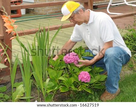 Gardener with flowers - stock photo